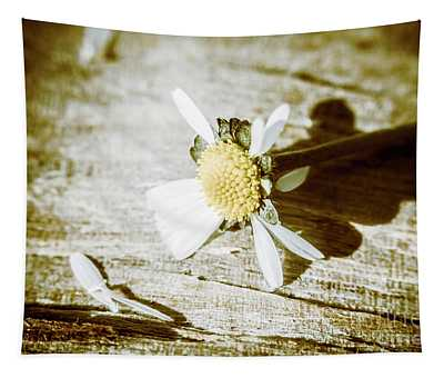 White Summer Daisy Denuded Of Its Petals Tapestry