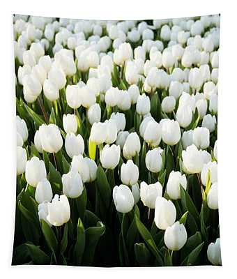 White Tulips In The Garden Tapestry