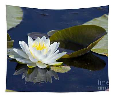White Waterlily Tapestry