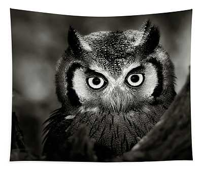 Whitefaced Owl Tapestry