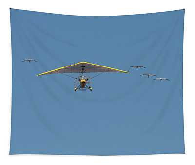Whooping Cranes And Operation Migration Ultralight Tapestry