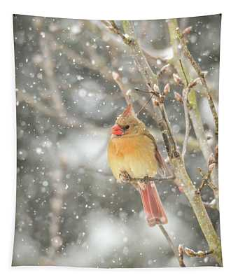 Wild Birds Of Winter - Female Cardinal In The Snow Tapestry