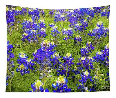 Wild Bluebonnets Blooming Tapestry