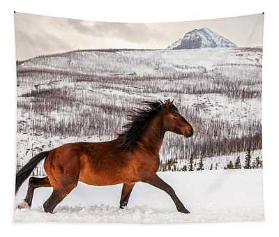 Wild Horses Photographs Wall Tapestries