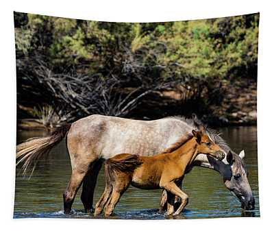 Wild Horses On The Salt River Tapestry