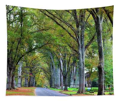Willow Oak Trees Tapestry