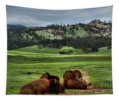 Wind Cave Bison Tapestry