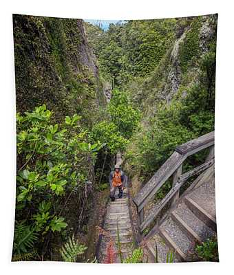 Windy Canyon Great Barrier Island New Zealand Tapestry