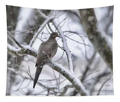 Winter Admiration Tapestry