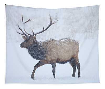 Winter Bull Tapestry