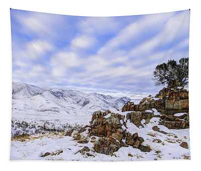Winter Desert Tapestry