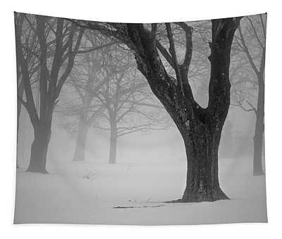 Winter Landscape V Tapestry
