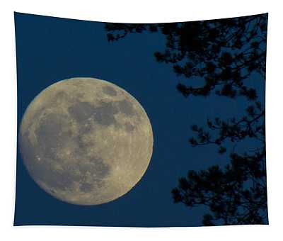 Winter Moon Tapestry