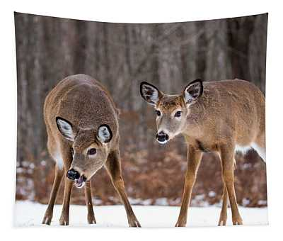 Winter White Tail Deer Tapestry