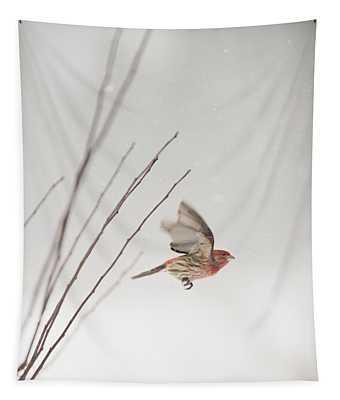 Winter Wind Surfing 1 Tapestry