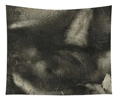 Woman Reclining On Her Bed Tapestry