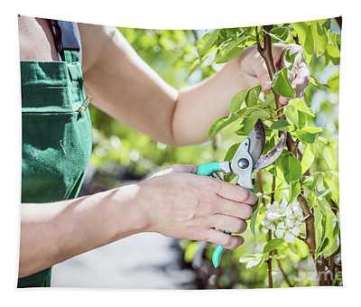 Women Gardener Cutting Tree Branch. Tapestry