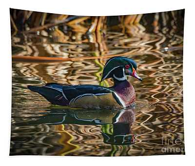 Wood Duck Drake 5 Tapestry