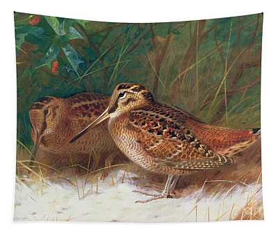 Woodcock Paintings Wall Tapestries