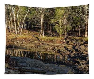 Wooded Backwash Tapestry