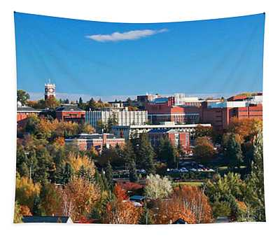 Wsu Autumn Panorama Tapestry