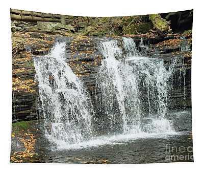Wyandot 2 - Ricketts Glen Tapestry