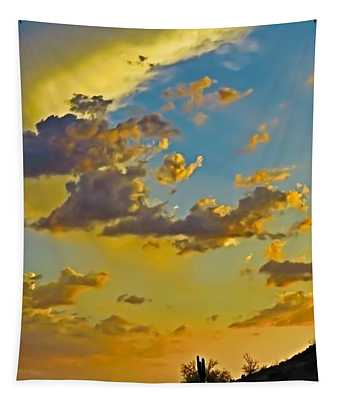 Y Cactus Sunset 10 Tapestry