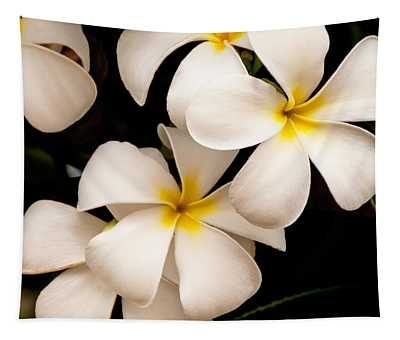 Yellow And White Plumeria Tapestry