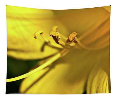 Yellow Daylily Tapestry
