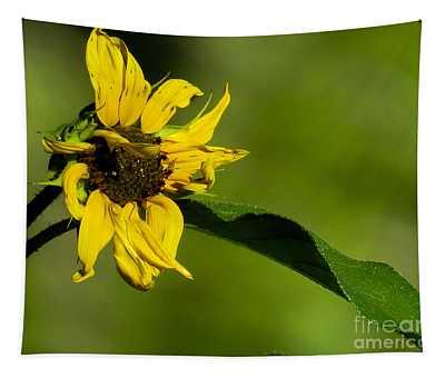 Yellow Flower 1 Tapestry