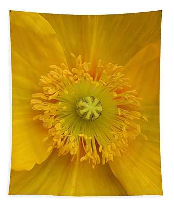 Yellow Poppy Flower Center Tapestry