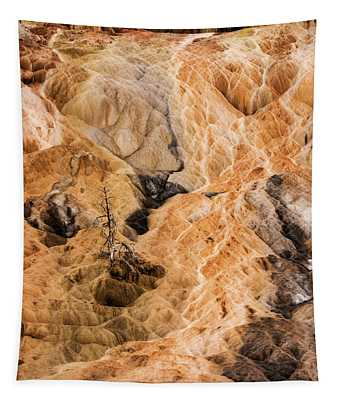 Tapestry featuring the photograph Yellow Stone National Park Abstract by Mae Wertz