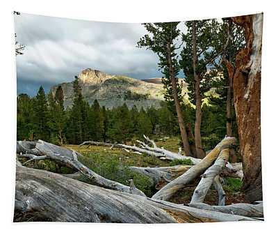 Yosemite Solitude Tapestry
