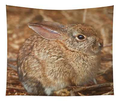 Young Cottontail In The Morning Tapestry
