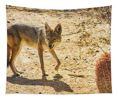 Young Coyote And Cactus Tapestry