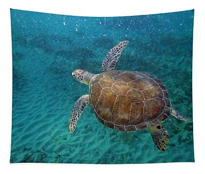 Young Green Turtle Tapestry