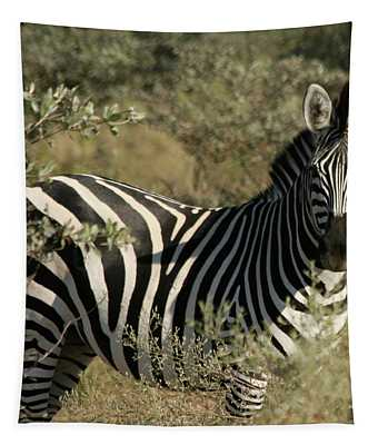 Zebra Portrait Tapestry
