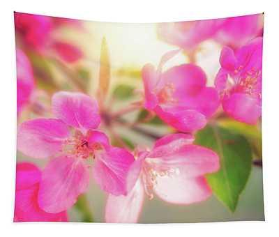 Apple Blossom 6 Tapestry