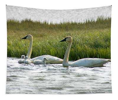 Arctic Tundra Swans And Cygnets Tapestry