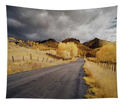 Back Road In Colorado Tapestry