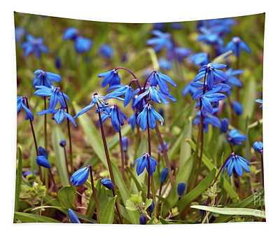 Blue Sound Of Spring Tapestry