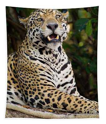 Close-up Of A Jaguar Panthera Onca Tapestry