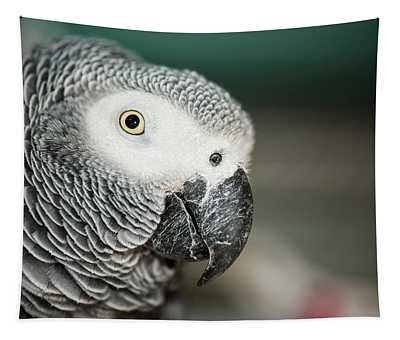 Close Up Of An African Grey Parrot Tapestry