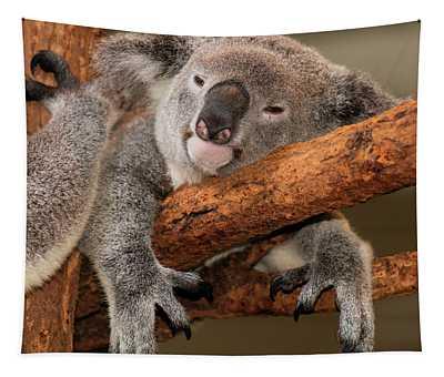Cute Australian Koala Resting During The Day. Tapestry