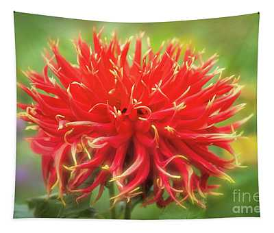Glorious Sho-n-tell Dahlia Tapestry