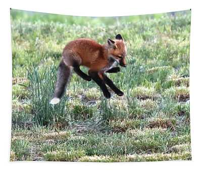 Jumping For Joy Tapestry