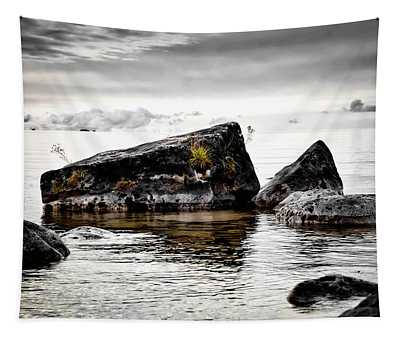 Lake Hurons Rocky Shore Tapestry