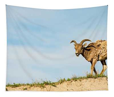 Mountain Sheep In Badlands National Park Tapestry