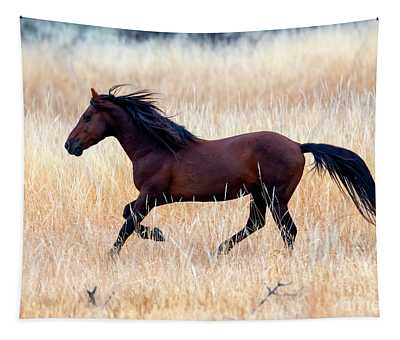 Mustang Gallop Tapestry