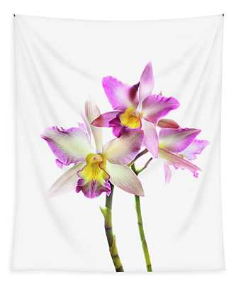 Orchids Against White Background Tapestry